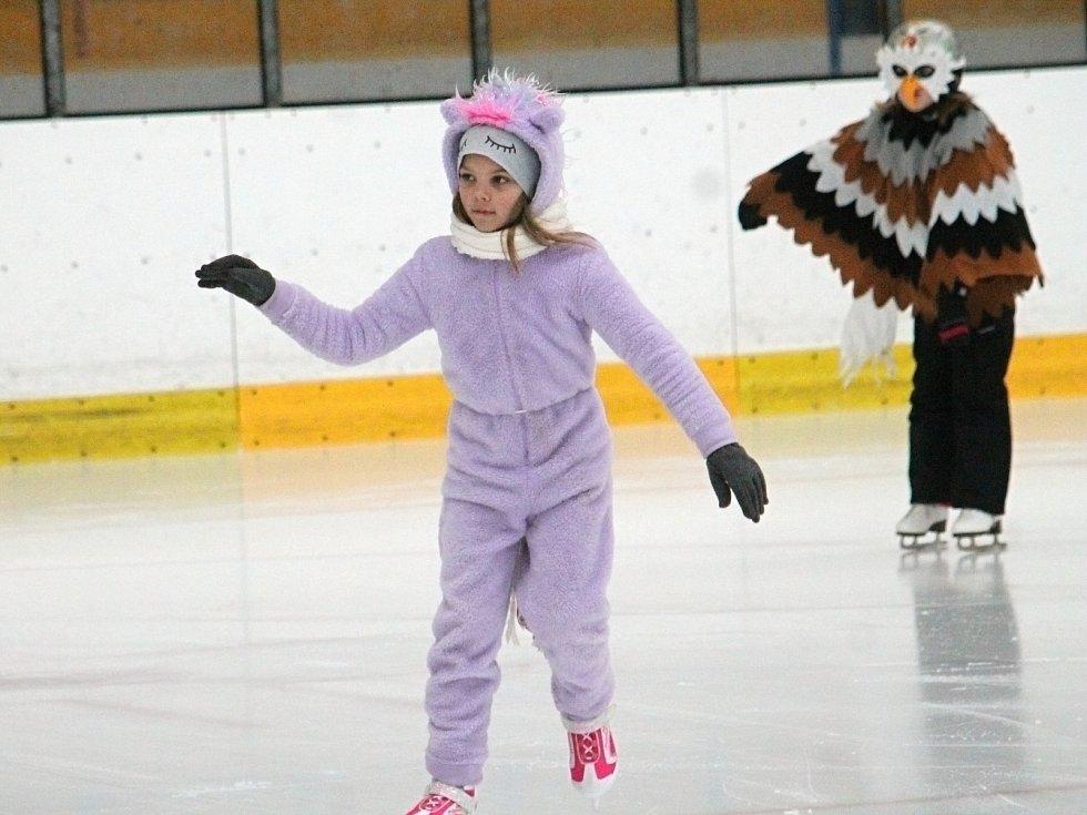 Z Karnevalu na ledě 2019 .
