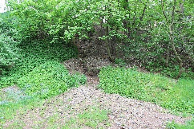 Lesopark Jamka. Vzrostlá zeleň alespoň zčásti zakrývá naplavený nepořádek.