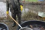 Výlov rybníka v Šanově