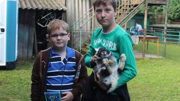 Výstava drobného zvířectva v Lužné