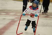 Týden hokeje na rakovnickém zimním stadionu.