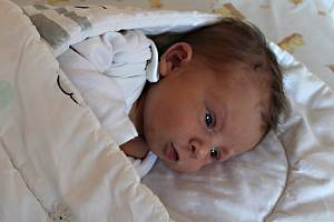 MATĚJ ŠERTL, PRAHA. Narodil se 7. prosince 2019. Po porodu vážil 3,3 kg a měřil 49 cm, rodiče jsou Kateřina a Ondřej.