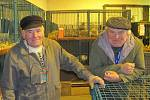 Výstava chovatelů v Rakovníku