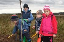 Děti z MŠ Panoší Újezd sázely stromy