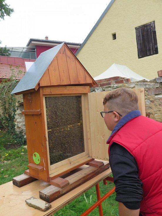 Včelařská výstava v Novém Strašecí.