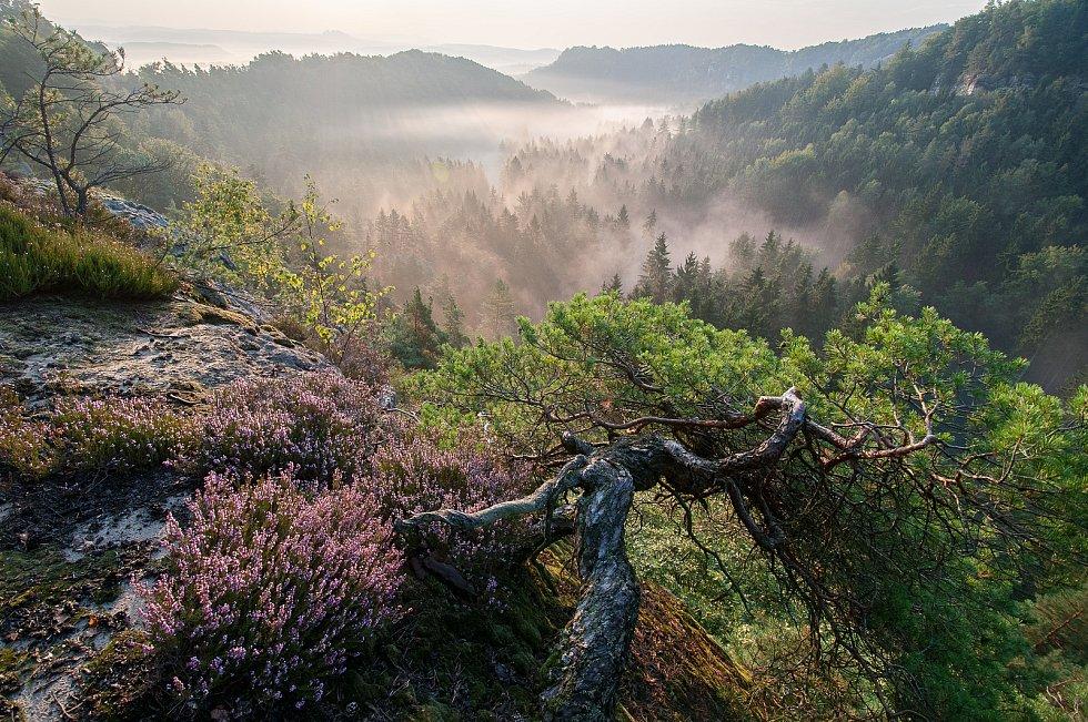 Drábské světničky v Českém ráji