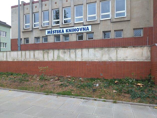Vzrostlá zeleň před Městskou knihovnou Rakovník musela být odstraněna.