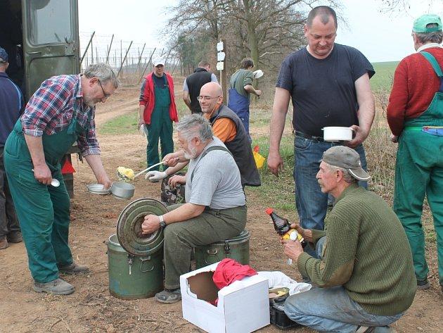 Jarní práce ve chmelu v Rakochmelu Kolešovice