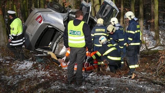 Řidič nezvládl řízení a narazil do stromu