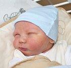 KRYŠTOV SKLENÁŘ, KRTY Narodil se 6. listopadu 2017. Po porodu vážil 3,78 kg a měřil 50 cm. Rodiče jsou Lada a Pavel.