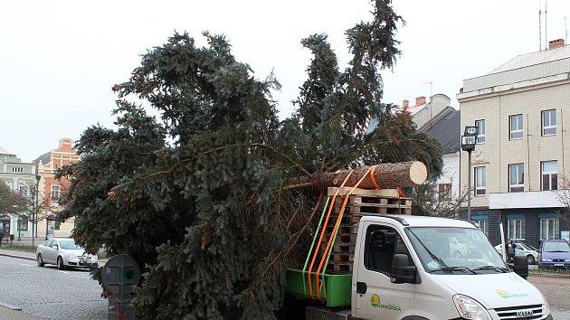 Instalace vánočního stromu na Husově náměstí v Rakovníku
