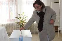 Krajské volby v Kolešovicích