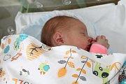 NIKOL TOMKOVÁ, HOŘESEDLY. Narodila se 11. října 2017. Po porodu vážila 3,25 kg. Rodiče jsou Michaela a Libor.