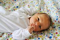 VIKTOR DOLANSKÝ, RAKOVNÍK. Narodil se 26. dubna 2019. Po porodu vážil 3,3 kg a měřil 51 cm. Maminka Jana.