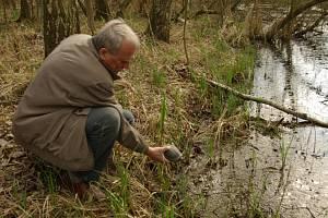 Želvy bahenní a jejich vypouštění na Červené louce