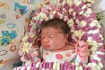 AGÁTA HIRTOVÁ, DOLANY. Narodila se 16. ledna 2019. Po porodu vážila 4,0 kg a měřila 52 cm. Rodiče jsou Lenka a Tomáš. Bratr Samuel.