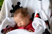JASMÍNA ZEDNÍKOVÁ, LIŠANY. Narodila se 1. 3. 2019. Po porodu vážila 3,55 kg a měřila 50 cm. Rodiče jsou Lucie a Martin. Sourozenci Justýna a Jonáš.
