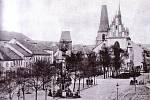 Prosto před kostelem vyplnilo v průběhu 20. století několik druhů stromořadí.