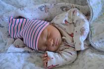 DOROTA HOJDOVÁ, PRAHA. Narodila se 3. prosince 2018. Po porodu vážila 3,4 kg. Rodiče jsou Václava a Matěj.
