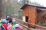 Lesní školka Šamotka má malé ZOO