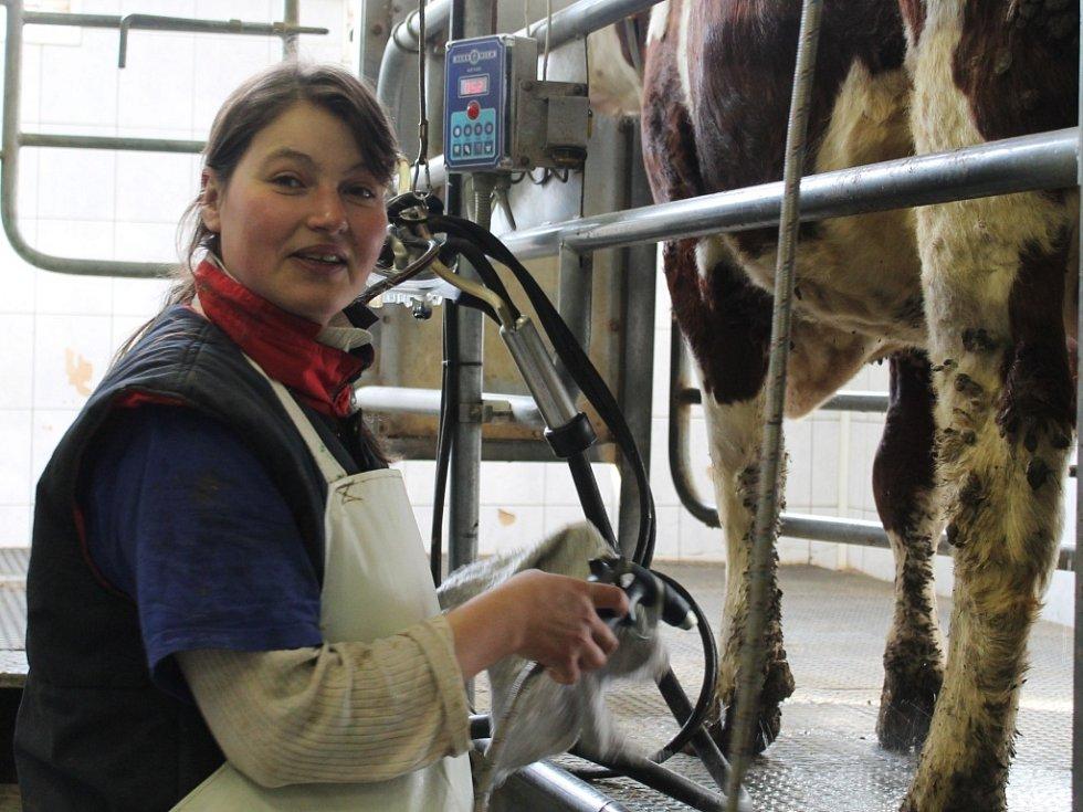 Živočišná výroba v Družstvu vlastníků Agro Malinová
