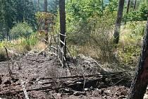 Lesní požár u obce Břežany