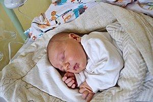 DOMINIK GREGOR, KLADNO. Narodil se 6. listopadu 2018. Po porodu vážil 3,5 kg a měřil 50 cm. Rodiče jsou Tereza a Petr.
