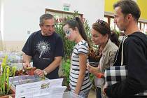 Výstava zahrádkářů ze Slabecka