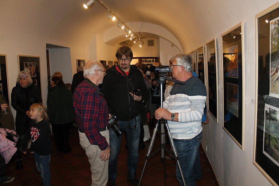 Z 54. členské výstavy Fotoklubu Amfora Rakovník.