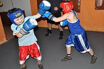 Boxerský trénink 20. ledna 2011