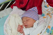 MATOUŠ SVOBODA, RAKOVNÍK. Narodil se 6. května 2018. Po porodu vážil 3,3 kg a měřil 50 cm. Rodiče jsou Nikola a Milan. Bratr Šimon.