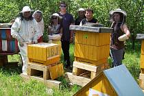 Včelařský kroužek