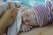 ROZÁLIE TASCHNEROVÁ, PRAHA. Narodila se 19. září 2019. Po porodu vážila 2,9 kg a měřila 50 cm. Rodiče jsou Martina a Martin. Sestra Amélie.