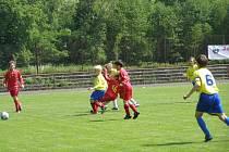 Mc Donalds Cup 2009
