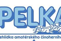 Popelka 2008