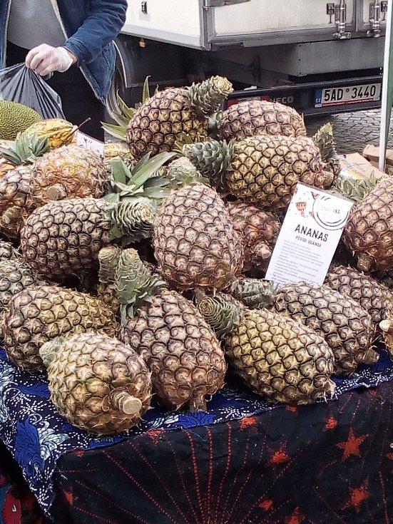Z Afrických trhů na Husově náměstí v Rakovníku v úterý 31. srpna 2021.