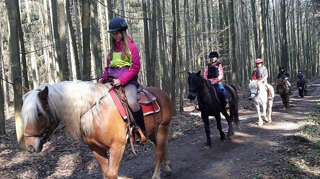 Na koni jezdí rekreačně malé děti i dospělí. Oblíbené jsou hlavně vyjížďky do přírody.