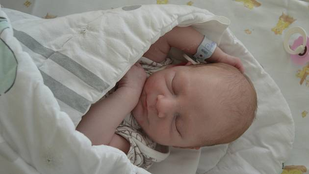 BEDŘICH MIGUEL STANĚK, HOŘOVIČKY. Narodil se 27. června 2019. Po porodu vážil 3,0 kg a měřil 49 cm. Rodiče jsou Pavlína a Bedřich.