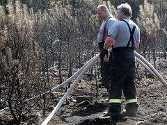 Hasiči bojují s požárem lesa u Olešné