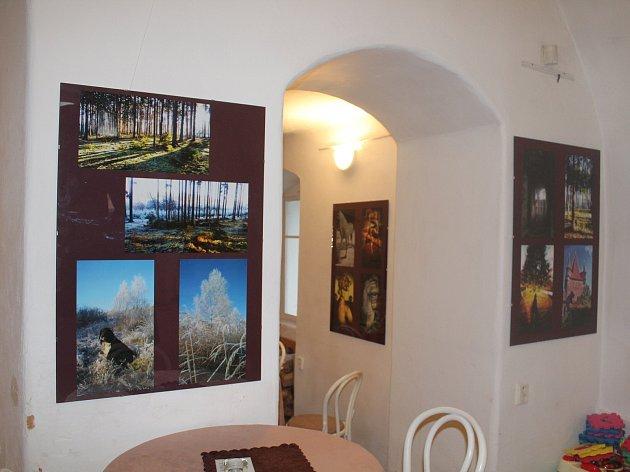 Vladimíra Kubičková fotí vše co se jí líbí, nejraději přírodu a památky.