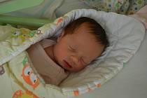 IVA MAJEROVÁ, ŠANOV. Narodila se 10. července 2019. Po porodu vážila 3,5 kg. Rodiče jsou Klára a Václav. Sestra Ema a bratr Matěj.