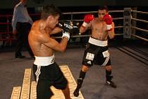 V rakovnickém kulturním centru se uskutečnil osmý ročník galavečeru Boxeři dětem