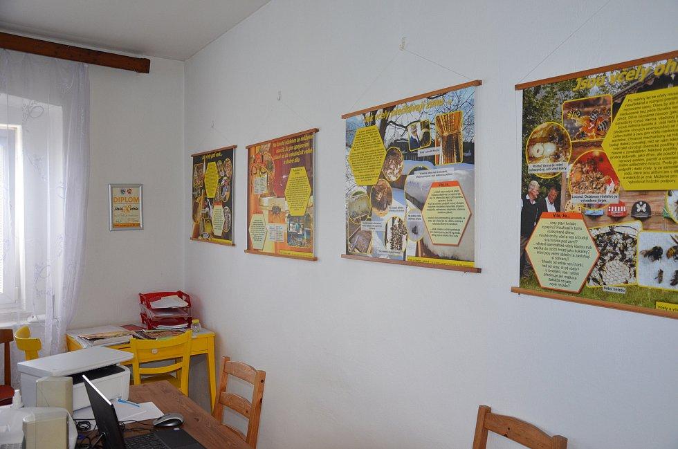 Výstava včelařů a masožravých rostlin v Novém Strašecí.