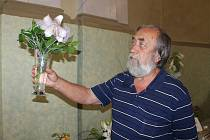 Výstava lilií v Rabasově galerii