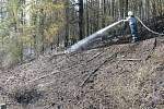 Požár lesa u obce Pustověty.
