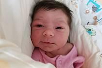 Lilly Pazdernatá, Lubná. Narodila se 1. dubna 2020. Po porodu vážila 3,30 kg a měřila 48 cm. Rodiče jsou Katka Pazdernatá a Mirek Škvrna. (porodnice Rakovník)