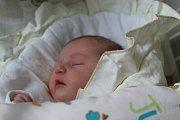 ANNA CÍROVÁ, NOVÝ DVŮR. Narodila se 12. října 2017. Po porodu vážila 3,25 kg a měřila 48 cm. Rodiče jsou Michaela a Jiří. Bratr Jiří.
