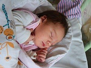 ELLA BEULAKKEROVÁ RAKOVNÍK. Narodila se 7. listopadu 2018. Po porodu vážila 3,4 kg a měřila 50 cm. Rodiče jsou Kristýna a Hendrik.