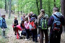 Výuka v lese