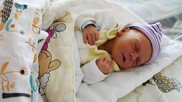 JIŘÍ DOVRTĚL, TEPLICE. Narodil se 25. května 2019. Po porodu vážil 3,0 kg a měřil 49 cm. Rodiče jsou Irena a Jiří.